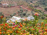 Huerta de Ranea, Andalucia Self catering rural accommodation, Spain