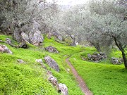 Walking trail in Andalucian landscape Spanish holiday activities near Comares